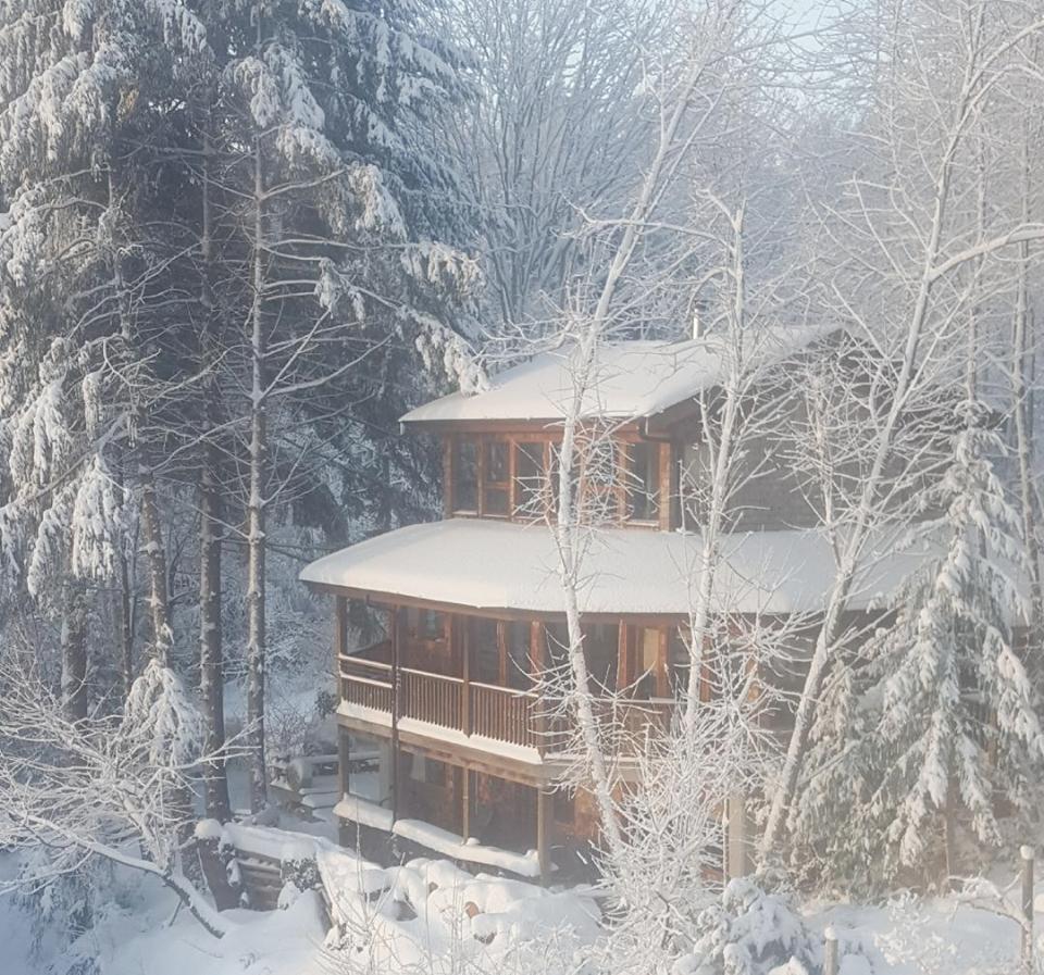 528 Harvey winter